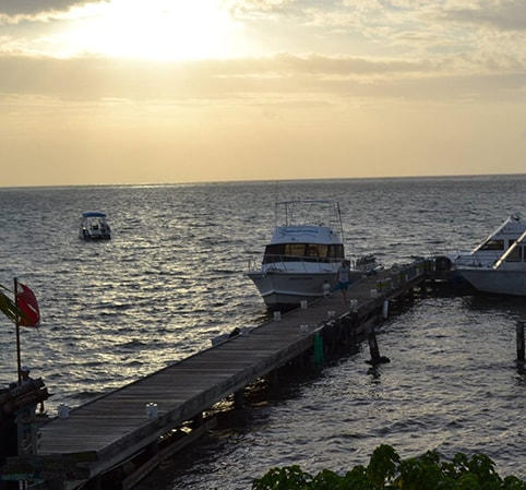GRAND CAYMAN ISLAND EXPEDITION AT COMPASS POINT