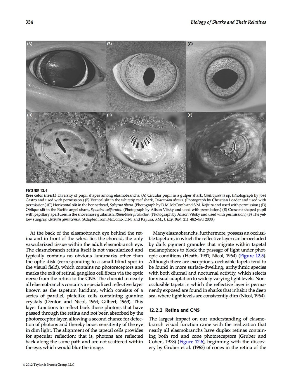 research papers the eye Research paper intrascleral drug delivery to the eye using hollow microneedles jason jiang, 1 jason s moore, 1 henry f edelhauser, 2 and mark r prausnitz 1,3.
