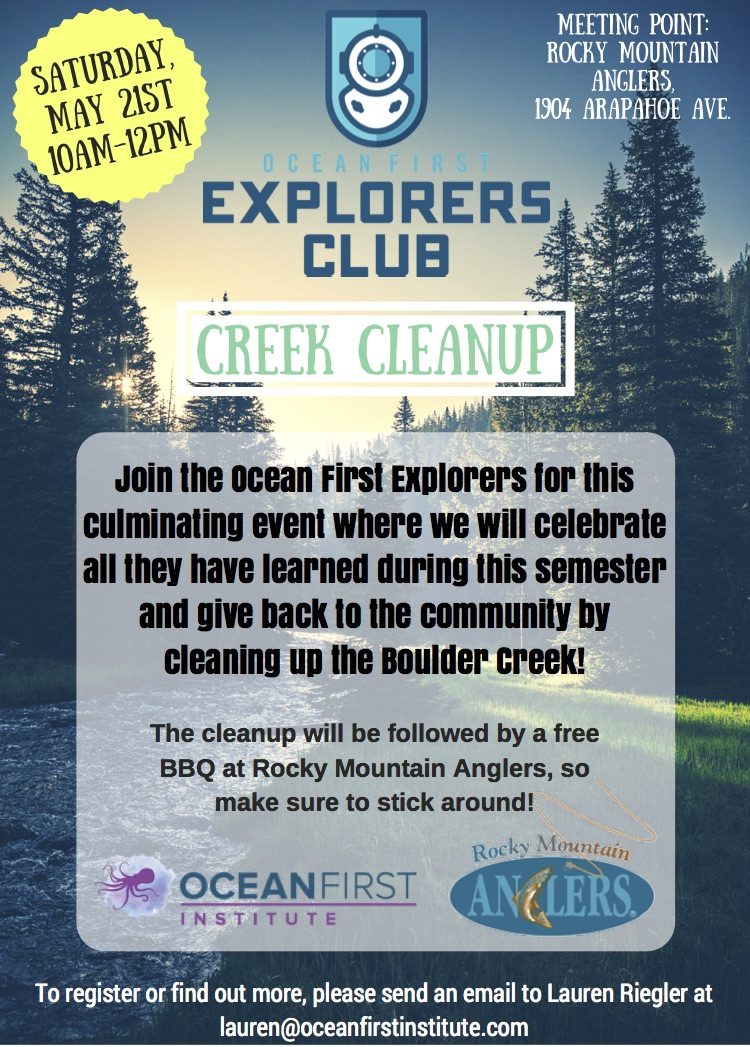 Creek Cleanup!