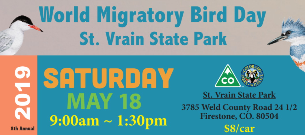 World Migratory Bird Day – St. Vrain State Park